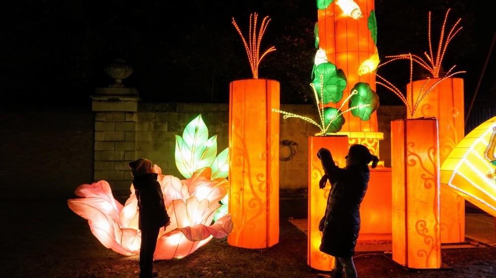 Magical Lantern Festival (3)