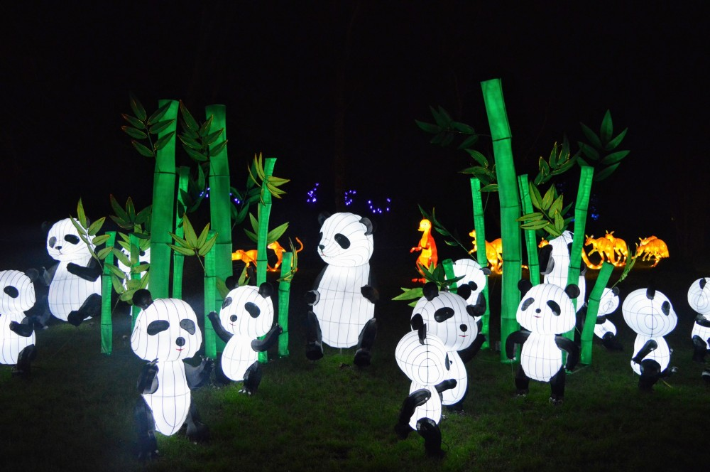 Magical Lantern Festival 2015 (2)