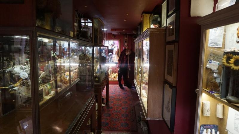 Viktor Wynd Museum (06)