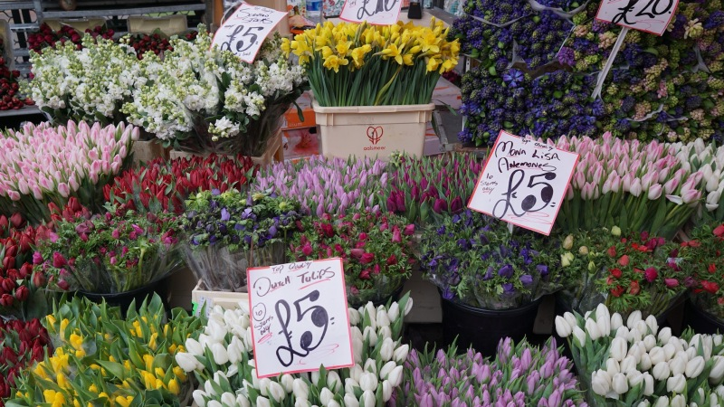 Columbia Flower Market (04)