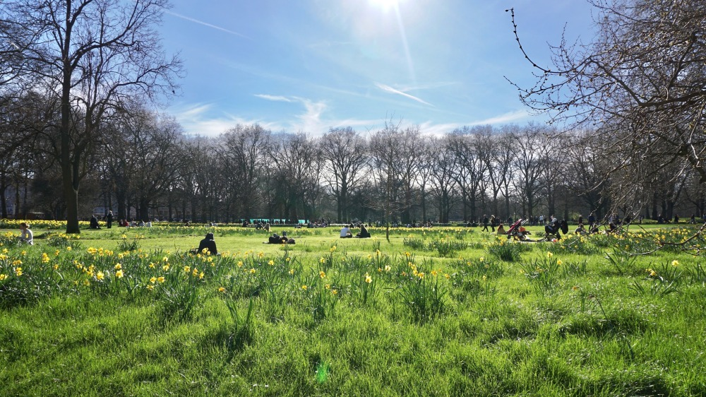 Spring in London (10)