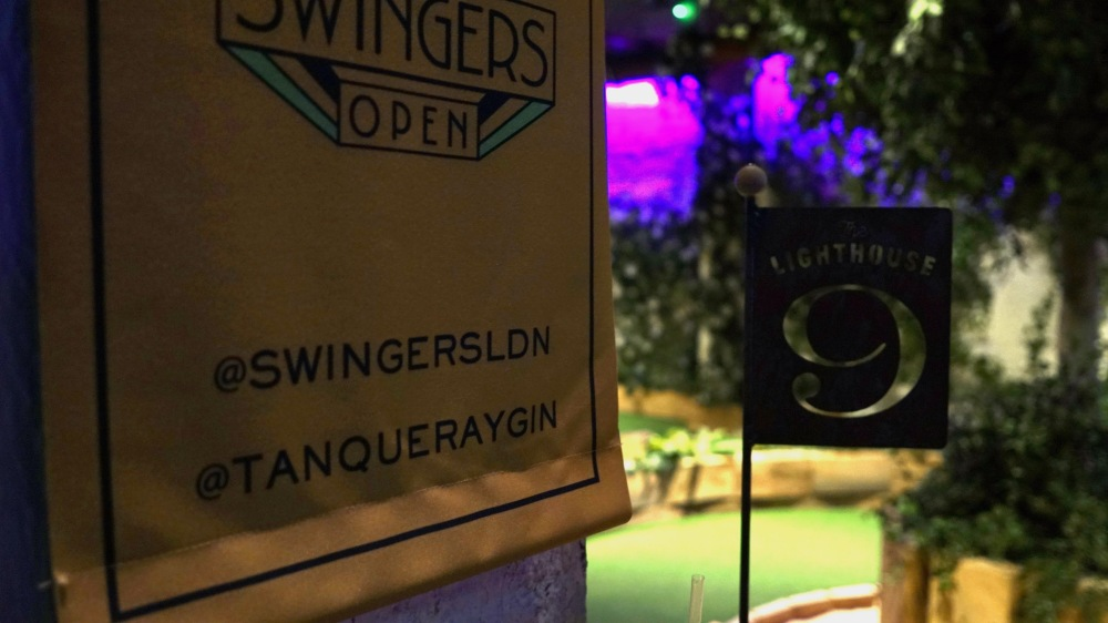 Swingers Crazy Golf (20)